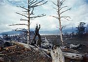 CS01185-03. Bayocean, March 1965