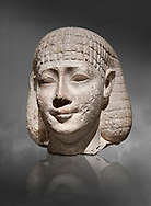 Ancient Egyptian statue bust of a male, graywacke,  Late Period, (722-322 BC), . Egyptian Museum, Turin. Grey background. Old Fund. Cat 3078. .<br /> <br /> If you prefer to buy from our ALAMY PHOTO LIBRARY  Collection visit : https://www.alamy.com/portfolio/paul-williams-funkystock/ancient-egyptian-art-artefacts.html  . Type -   Turin   - into the LOWER SEARCH WITHIN GALLERY box. Refine search by adding background colour, subject etc<br /> <br /> Visit our ANCIENT WORLD PHOTO COLLECTIONS for more photos to download or buy as wall art prints https://funkystock.photoshelter.com/gallery-collection/Ancient-World-Art-Antiquities-Historic-Sites-Pictures-Images-of/C00006u26yqSkDOM