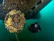 Scuba diver on the site of the Aircraft Challenger 600 landing gear at Dutch Springs, Scuba Diving Resort in Pennsylvania