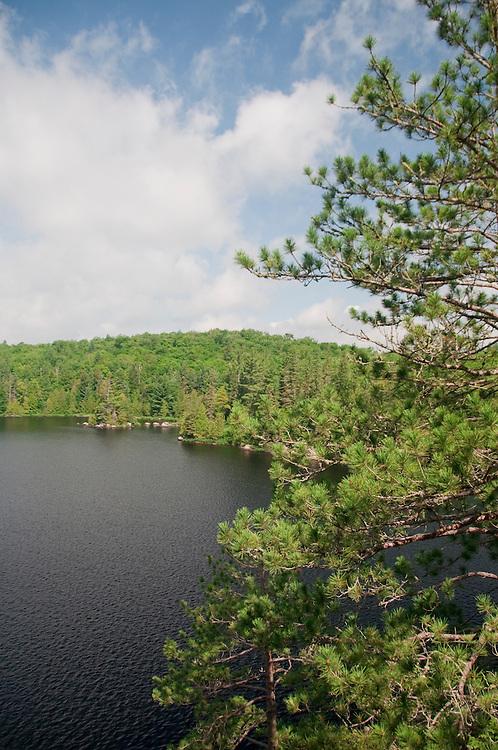 The landscape around Craig Lake at Craig Lake State Park near Michigamme Michigan.
