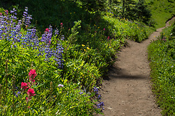 Silver Creek Trail, Crystal Mountain Washington
