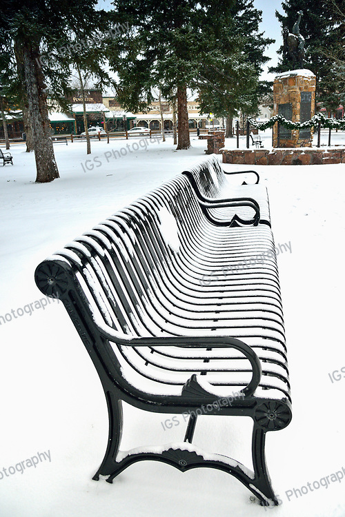 Snow covered Bench in Jackson Town Square
