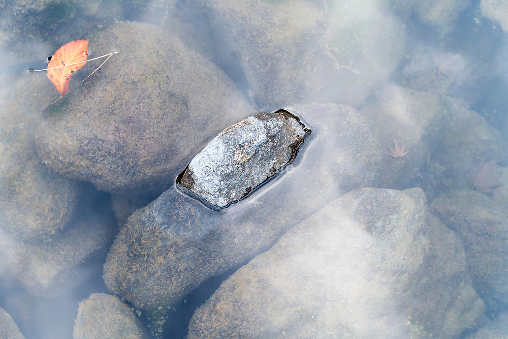 stones in a pond with autumn leaf