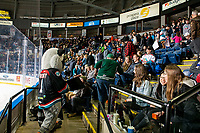 KELOWNA, CANADA - FEBRUARY 15: Kelowna Rockets' mascot Rocky Racoon has some fun with Everett Silvetips fans in the stands on February 15, 2019 at Prospera Place in Kelowna, British Columbia, Canada.  (Photo by Marissa Baecker/Shoot the Breeze)