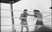 Ali vs Lewis Fight, Croke Park,Dublin..1972..19.07.1972..07.19.1972..19th July 1972..As part of his built up for a World Championship attempt against the current champion, 'Smokin' Joe Frazier,Muhammad Ali fought Al 'Blue' Lewis at Croke Park,Dublin,Ireland. Muhammad Ali won the fight with a TKO when the fight was stopped in the eleventh round...Picture shows Bugner landing a flurry of punches to an overwhelmed Neilson.