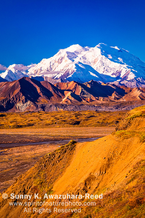 Close up of Mount Denali (McKinley) and Muldrow Glacier, viewed from Eielson Bluffs, Denali National Park & Preserve, Alaska, Autumn. Vertical image.