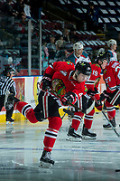 KELOWNA, CANADA - APRIL 8: Conor MacEachern #4 of the Portland Winterhawks warms up with a shot on net against the Kelowna Rockets on April 8, 2017 at Prospera Place in Kelowna, British Columbia, Canada.  (Photo by Marissa Baecker/Shoot the Breeze)  *** Local Caption ***