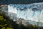 The icy blue face of Perito Moreno Glacier melts into Lake Argentino, in Los Glaciares National Park, near El Calafate, Argentina, Patagonia, South America. The spectacular Perito Moreno Glacier is one of 48 glaciers fed by the Southern Patagonian Ice Field (the world's third largest reserve of fresh water). Lago Argentino is the biggest freshwater lake in Argentina and reaches as deep as 500 meters (1640 feet). Its outlet, the Santa Cruz River, flows into the Atlantic Ocean. Despite most glaciers worldwide retreating due to global warming, Perito Moreno Glacier has been a relatively stable exception for the past hundred years. Located 78 kilometers (48 mi) from El Calafate, the glacier was named after explorer Francisco Moreno, a pioneer who studied the region in the 1800s and defended the territory of Argentina in the conflict surrounding the international border dispute with Chile. Los Glaciares National Park is honored on UNESCO's World Heritage List.