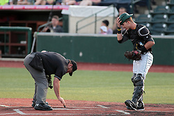26 July 2014:  Umpire Steve Dunahue dusts the plate as Tyler Shover adjusts his helmet during a Frontier League Baseball game between the Lake Erie Crushers and the Normal CornBelters at Corn Crib Stadium on the campus of Heartland Community College in Normal Illinois
