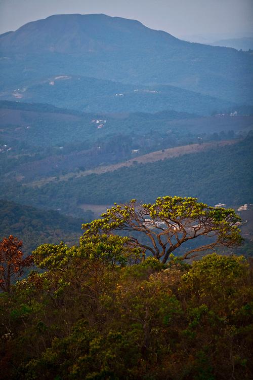 Nova Lima_MG, Brasil...Estacao Ecologica de Fechos em Nova Lima, Minas Gerais...Fechos Ecological Station in Nova Lima, Minas Gerais...Foto: JOAO MARCOS ROSA  /NITRO..
