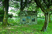 Derelict shack in rural setting in the round garden at Kilfenora, County Clare, West of Ireland