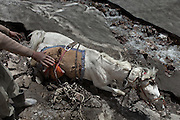 A horse fell down in a crevasse. Trekking up and along the Wakhan river, the only way to reach the high altitude Little Pamir plateau, home of the Afghan Kyrgyz community.