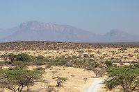 The mountains of northern Kenya as seen from Shaba National Reserve