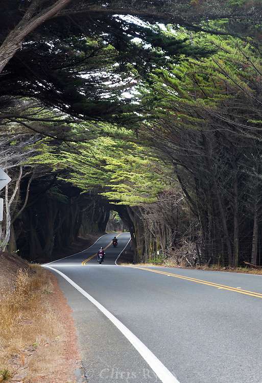 Motorcyclists on the Pacific Coast Highway, Northern California