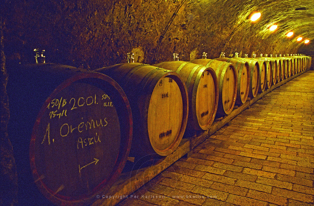 """The Kiralyudvar winery: Rows of barrels with Tokaj wine with glass bung hole stoppers in the ageing underground cellar. A barrel marked with the vineyard name Oremus, the vintage 2001 and Aszu quality. Kiralyudvar (meaning """"King's Court"""")is run by Istvan Szepsy, considered maybe the best winemaker in Tokaj. he also makes Tokaj under his own name.  Credit Per Karlsson BKWine.com"""