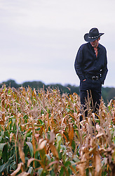 cowboy standing in a corn field in East Hampton, NY
