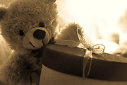 A teddy bear and gift wrapped box