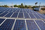 Solar Array on rooftop of ABC Tree Nursery, Installation by Martifer Solar USA, Gardena, California, USA