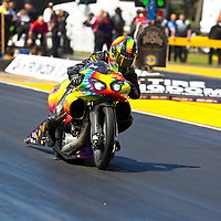 GAINESVILLE, FL - MAR 11, 2011:  Driver, Bailey Whitaker, brings his Pro Stock Motorcycle down the track during a qualifying run for the Tire Kingdom NHRA Gatornationals race in Gainesville, FL.