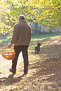 Hugues Martin, the owner of the truffles farm with a wicker basket to collect the truffles, with the truffles hunting sniffing dog called Mocha Truffiere de la Bergerie (Truffière) truffles farm Ste Foy de Longas Dordogne France