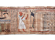 Ancinet Egyptian Book of the Dead papyrus - Aaner Book of the Dead, Thebes - 21st Dynasty (1076-943C).Turin Egyptian Museum. white background<br /> <br /> During the 21st Dynasty the number of spells in Books of the Dead was often reduced in favour of decrative panels. small illustrated vignettes take up a large part of the papytus surface .<br /> <br /> If you prefer to buy from our ALAMY PHOTO LIBRARY  Collection visit : https://www.alamy.com/portfolio/paul-williams-funkystock/ancient-egyptian-art-artefacts.html  . Type -   Turin   - into the LOWER SEARCH WITHIN GALLERY box. Refine search by adding background colour, subject etc<br /> <br /> Visit our ANCIENT WORLD PHOTO COLLECTIONS for more photos to download or buy as wall art prints https://funkystock.photoshelter.com/gallery-collection/Ancient-World-Art-Antiquities-Historic-Sites-Pictures-Images-of/C00006u26yqSkDOM