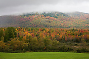 Above field of green grass, a mountain of fall colors in the fog.