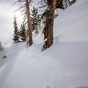 Tanner Flanagan skis the backcountry near Jackson Hole Mountain Resort in Teton Village, Wyoming.