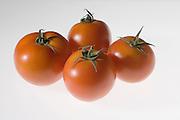 Ripe greenhouse tomato on white background