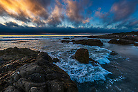 090-P103974<br /> <br /> Asilomar State Beach<br /> © 2019, California State Parks.<br /> Photo by Brian Baer
