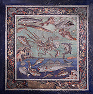 Roman marine fish  mosaic of Pompeii, Casa del Fauno )VI, 12, 2), inv 9997  Naples Archaeological Musum, Italy.  Wall art print by Photographer Paul E Williams If you prefer visit our World Gallery Print Shop To buy a selection of our prints and framed prints desptached  with a 30-day money-back guarantee and is dispatched from 16 high quality photo art printers based around the world. ( not all photos in this archive are available in this shop) https://funkystock.photoshelter.com/p/world-print-gallery .<br /> <br /> USEFUL LINKS:<br /> Visit our other HISTORIC AND ANCIENT ART COLLECTIONS for more photos to buy as wall art prints  https://funkystock.photoshelter.com/gallery-collection/Ancient-Historic-Art-Photo-Wall-Art-Prints-by-Photographer-Paul-E-Williams/C00002uapXzaCx7Y