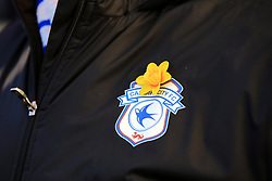 Cardiff City fans wear dafodiles to honour missing footballer Emiliano Sala during the Premier League match at the Cardiff City Stadium.