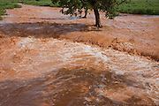 A flooded river during the rainy season near Opuwo, in northwestern Namibia. The flash flood resulted from a thunderstorm in the mountains.