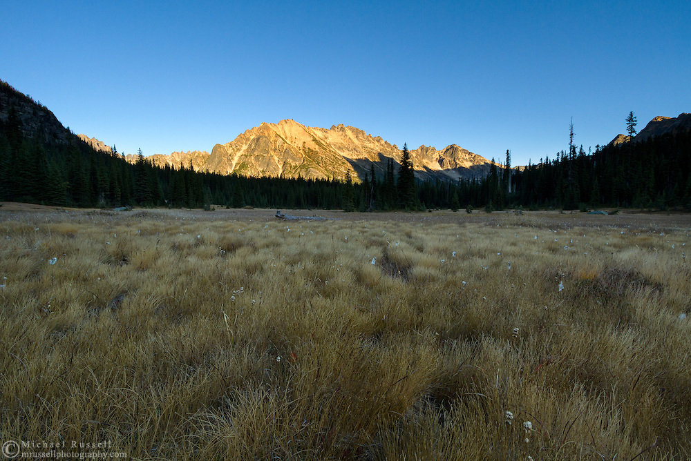 Kangaroo Ridge and Narrow Leaved Cotton Grass (Eriophorum angustifolium) from Washington Pass in the North Cascades of the Okanogan-Wenatchee National Forest in Washington State, USA.