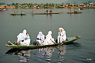 A group of Muslim girls in their uniform hide in front of the camera while going to school on the Dal Lake.