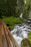 Wahclella Fallls in the Columbia River Gorge is a travelers dream. Gorgeous waterfall views and scenic trails can draw anyone to this area of the Pacific Northwest.