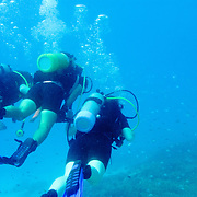 Scuba divers at Lady Elliot Island