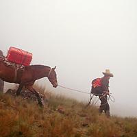 "A horseman descends a foggy trail through ""halka"" grasslands."