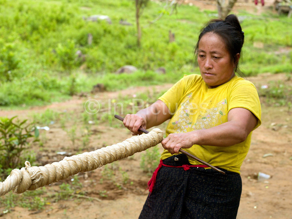 After the hemp skeins are boiled in ash water and washed in the river, a Hmong woman wrings the water out of the hemp fibre in Ban Tatong, Phongsaly province, Lao PDR. Making hemp fabric is a long and laborious process; the end result is a strong durable cloth with qualities similar to linen which the Hmong women use to make their traditional clothing. In Lao PDR, hemp is now only cultivated in remote mountainous areas of the north. The remote and roadless village of Ban Tatong is situated along the Nam Kang river (an offshoot of the Nam Ou) and will be relocated due to the construction of the Nam Ou Cascade Hydropower Project Dam 7.