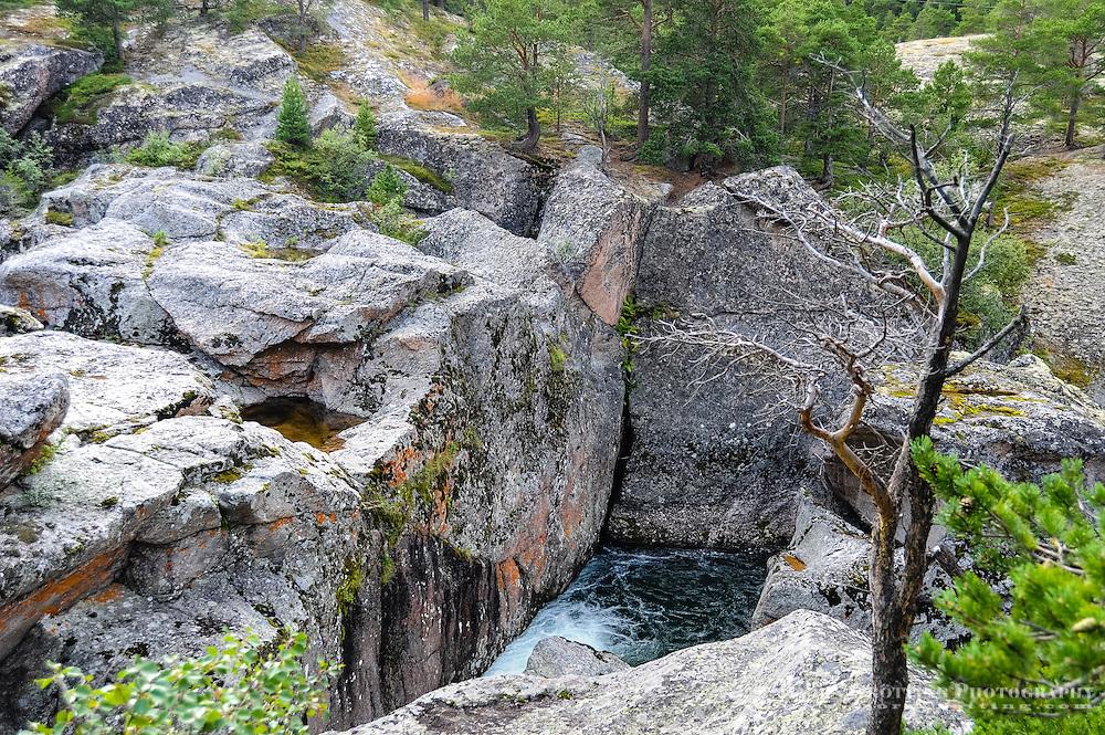 Norway, Sør-Trøndelag. Magalaupet gorge in the river Driva in Oppdal.