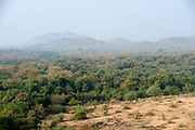 View of valley and forest, Gir Forest National Park and Wildlife Sanctuary, Gujarat, India