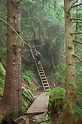 Zach Podell-Eberhard (top) and Henry climb a ladder along the West Coast Trail, British Columbia, Canada.