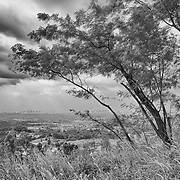 Metropolitan Manila is just a speck in the distance from this hilltop in Taytay, Rizal