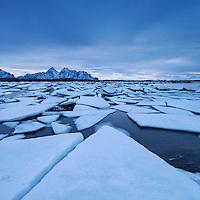 Frozen sea ice along winter coastline, near Nedredal, Vestvågøy, Lofoten Islands, Norway