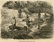 Californina Gold Rush: Cradling and panning for gold on American River near Sacramento. Engraving, 1853.