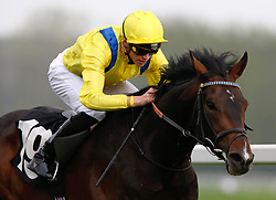 Young Rascal ridden by James Doyle wins The Carter Jonas Maiden Stakes Race run during Dubai Duty Free Spring Trials Saturday at Newbury Racecourse.