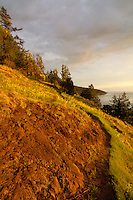 Late golden hour light spills across the serpentine cliffs strewn with wildflowers on a gorgeous early evening on Washington's Fidalgo Island.