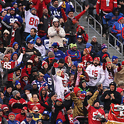 San Fransisco 49ers fans in the crowd during the New York Giants V San Francisco 49ers, NFL American Football match at MetLife Stadium, East Rutherford, NJ, USA. 16th November 2014. Photo Tim Clayton