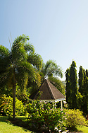 Tropical plants and trees around a gazebo in the Hyde Park Garden, St. George's, Grenada, The West Indies,The Caribbean