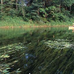 Canterbury, NH.Paddling on the Merrimack River.  Gold Star Farm, Canterbury, New Hampshire.