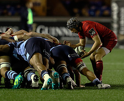 Duncan Williams of Munster puts in at the scrum<br /> <br /> Photographer Simon King/Replay Images<br /> <br /> Guinness PRO14 Round 4 - Cardiff Blues v Munster - Friday 21st September 2018 - Cardiff Arms Park - Cardiff<br /> <br /> World Copyright © Replay Images . All rights reserved. info@replayimages.co.uk - http://replayimages.co.uk
